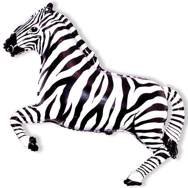 Зебра черная